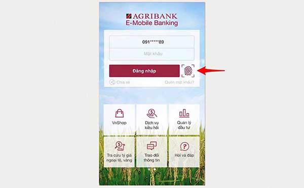 Tra cứu số tài khoản ngân hàng Agribank